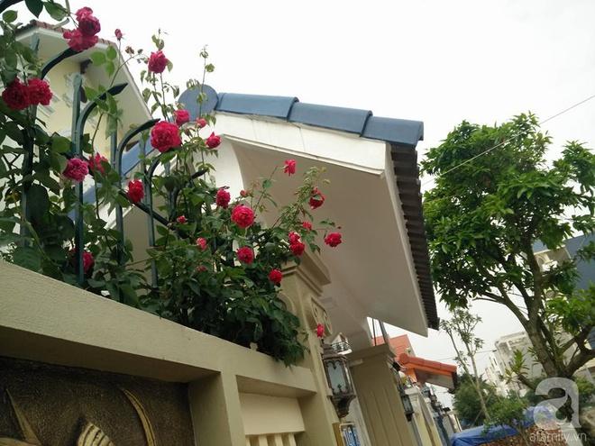 Đến thăm khu vườn hồng rực rỡ của người phụ nữ yêu hoa đất Hải Dương - Ảnh 2.