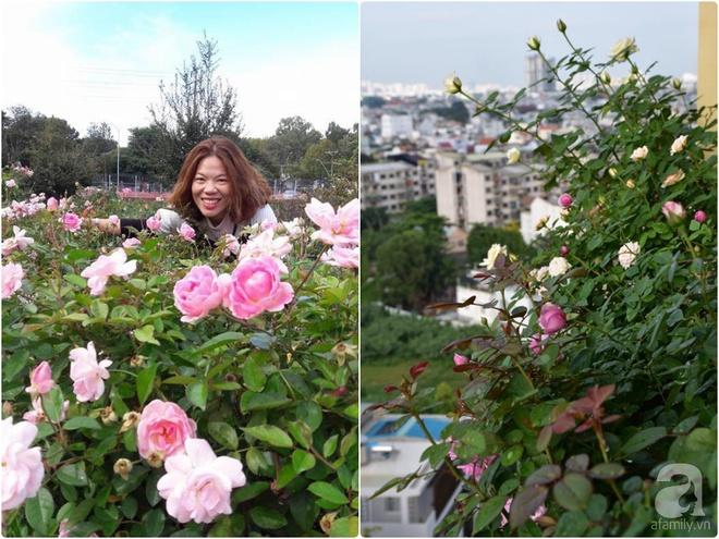 Ngắm ban công chỉ vỏn vẹn 2,2m² nhưng có tới hơn 20 chậu hồng thơm ngát ở Sài Gòn - Ảnh 1.