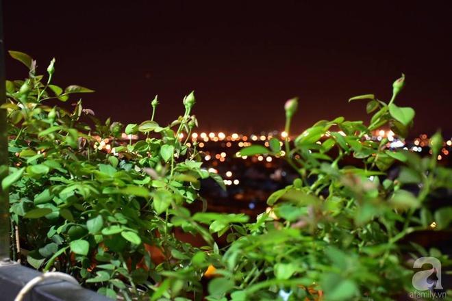 Ngắm ban công chỉ vỏn vẹn 2,2m² nhưng có tới hơn 20 chậu hồng thơm ngát ở Sài Gòn - Ảnh 3.
