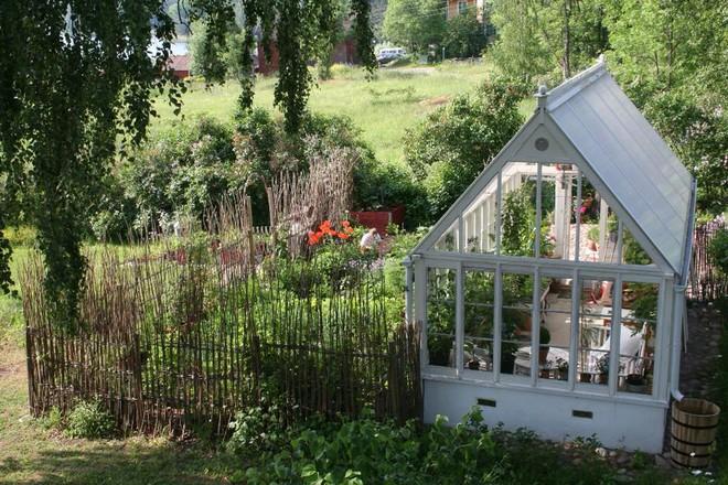 Khu vườn bạt ngàn rau quả sạch của người phụ nữ bắt đầu làm vườn từ năm 10 tuổi - Ảnh 3.
