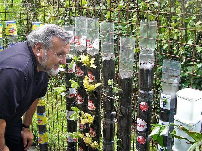 Câu chuyện trồng rau sạch từ chai và thùng nhựa bỏ đi của vị giáo sư Đại học sau khi về hưu - Ảnh 1.