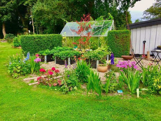 Khu vườn cổ tích đẹp như trong tranh vẽ của hai chàng trai yêu thích trồng rau, nuôi gà từ bé - Ảnh 5.