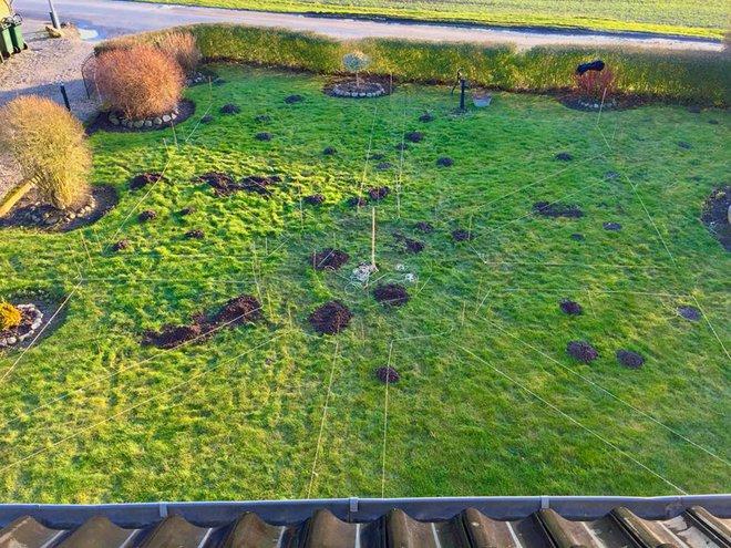 Khu vườn cổ tích đẹp như trong tranh vẽ của hai chàng trai yêu thích trồng rau, nuôi gà từ bé - Ảnh 6.