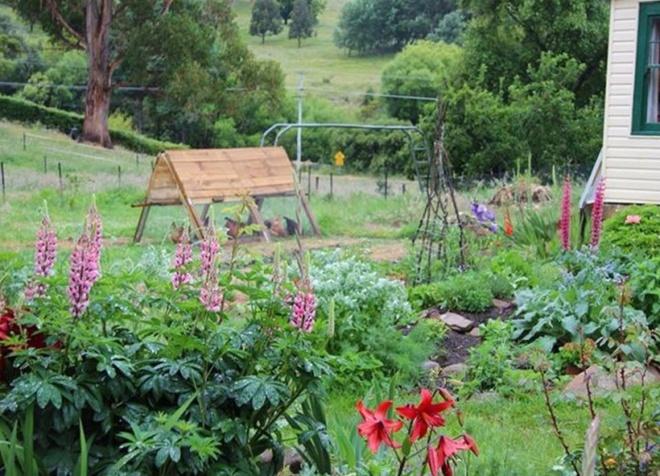 Cuộc sống yên bình của một gia đình nhỏ bên khu vườn cây sai trĩu quả như trong thế giới cổ tích - Ảnh 1.