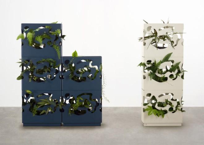 Chậu trồng cây trong nhà cực tiện lợi dành cho những người yêu thiên nhiên - Ảnh 3.