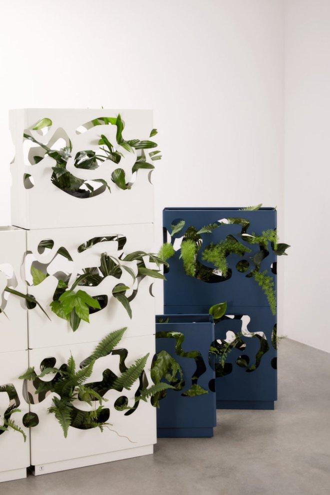 Chậu trồng cây trong nhà cực tiện lợi dành cho những người yêu thiên nhiên - Ảnh 4.