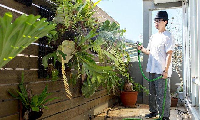 Căn hộ trên tầng áp mái với khu vườn xanh mát màu thiên nhiên của giám đốc văn phòng - Ảnh 18.