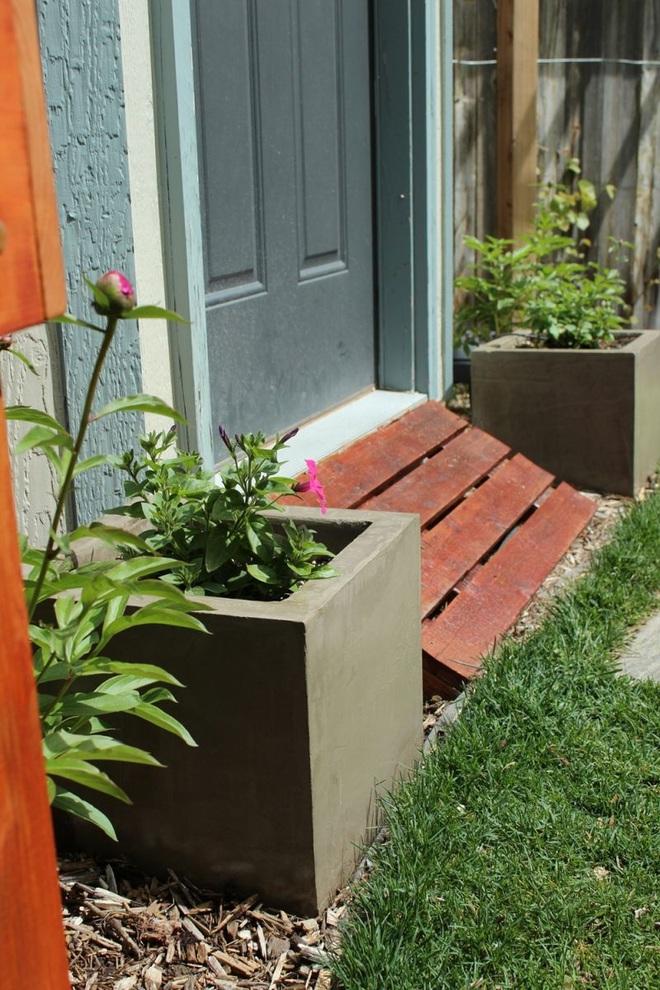 Trang trí nhà với bồn cây - giải pháp tiết kiệm nhưng khiến nhà đẹp bất ngờ - Ảnh 1.