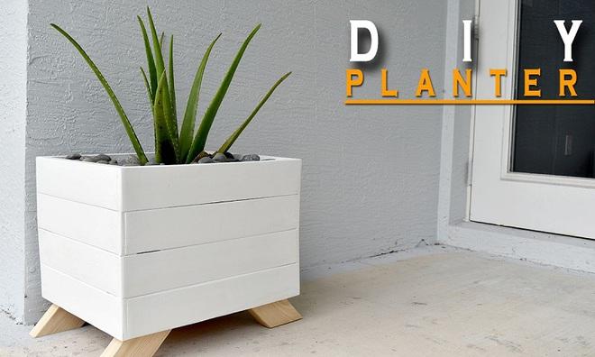 img20180330105623112 Trang trí nhà với bồn cây   giải pháp để tiết kiệm nhưng khiến nhà đẹp bất ngờ