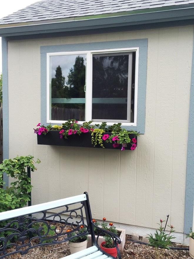 Trang trí nhà với bồn cây - giải pháp tiết kiệm nhưng khiến nhà đẹp bất ngờ - Ảnh 3.