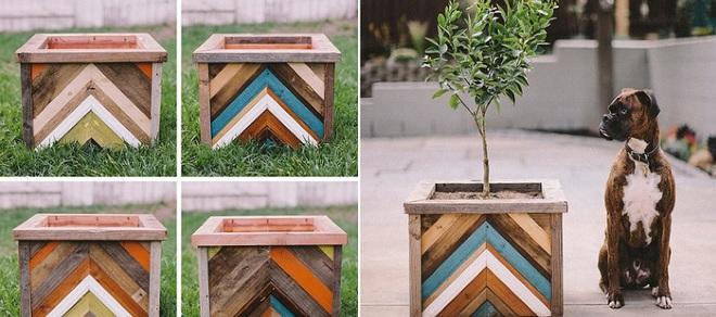 img20180330105624675 Trang trí nhà với bồn cây   giải pháp để tiết kiệm nhưng khiến nhà đẹp bất ngờ