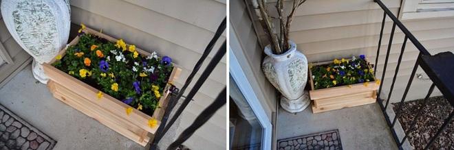 Trang trí nhà với bồn cây - giải pháp tiết kiệm nhưng khiến nhà đẹp bất ngờ - Ảnh 6.