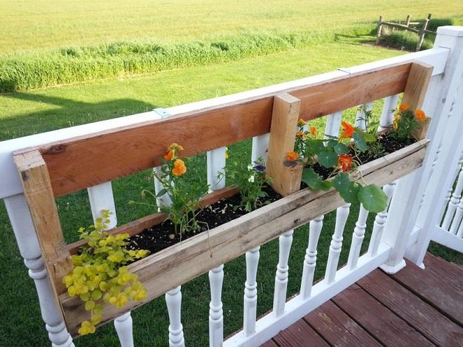 Trang trí nhà với bồn cây - giải pháp tiết kiệm nhưng khiến nhà đẹp bất ngờ - Ảnh 10.