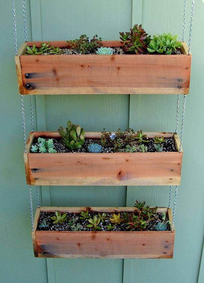 img20180330105629769 Trang trí nhà với bồn cây   giải pháp để tiết kiệm nhưng khiến nhà đẹp bất ngờ