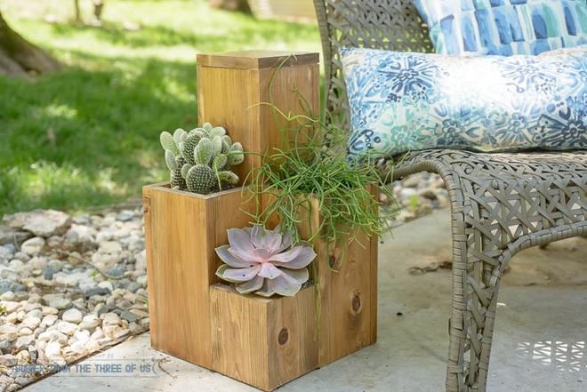 img20180330105632566 Trang trí nhà với bồn cây   giải pháp để tiết kiệm nhưng khiến nhà đẹp bất ngờ