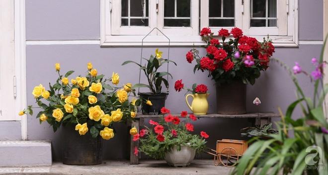 Ngôi nhà phố góc nào cũng xinh xắn và lãng mạn với hoa tươi của người phụ nữ Hà Thành - Ảnh 3.