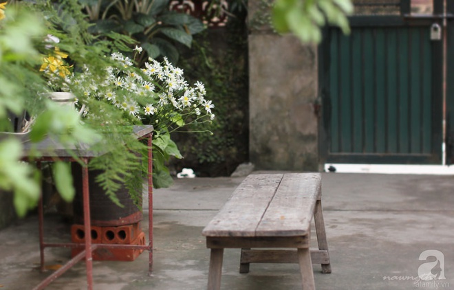Ngôi nhà phố góc nào cũng xinh xắn và lãng mạn với hoa tươi của người phụ nữ Hà Thành - Ảnh 6.