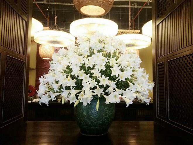 Tháng 4 về, ai cũng dành một góc nhà tinh khôi trong trẻo với hoa loa kèn - Ảnh 5.