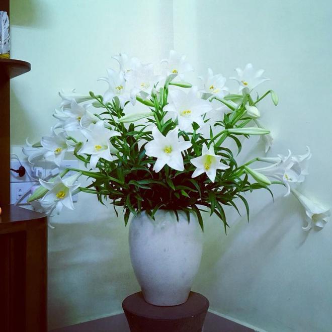 Tháng 4 về, ai cũng dành một góc nhà tinh khôi trong trẻo với hoa loa kèn - Ảnh 11.