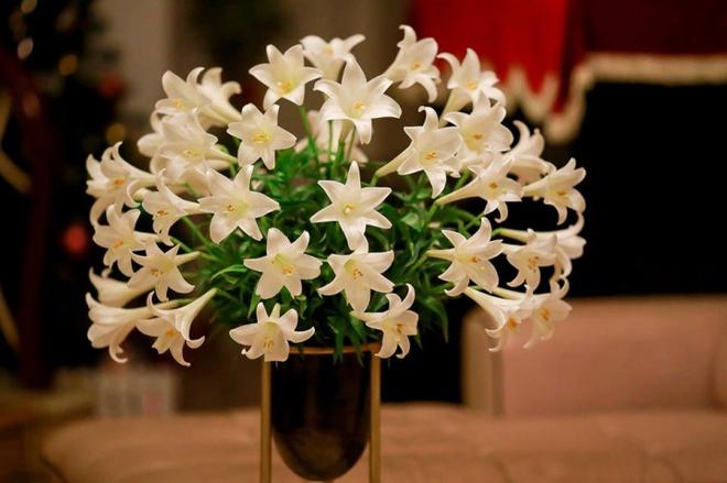 Tháng 4 về, ai cũng dành một góc nhà tinh khôi trong trẻo với hoa loa kèn - Ảnh 20.