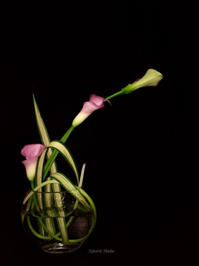 Không gian sống đẹp kiêu sa khi được trang trí với loài hoa rum đỏng đảnh - Ảnh 8.