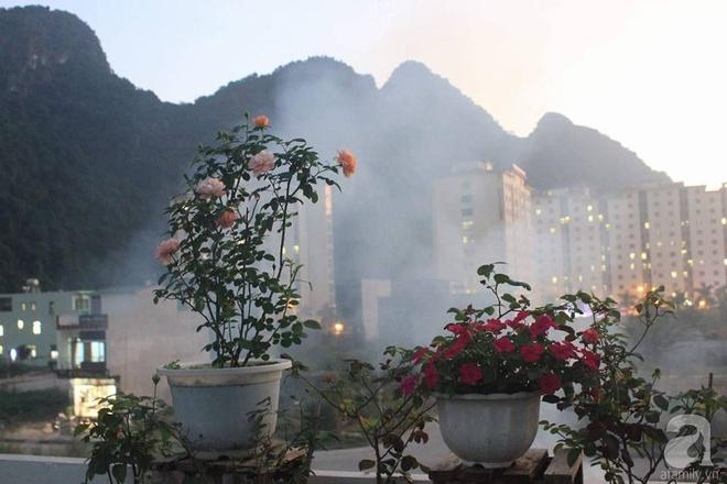 Ngôi nhà hoa hồng nhỏ nhắn và vô cùng dễ thương giữa thành phố Hạ Long của mẹ trẻ xinh đẹp - Ảnh 17.