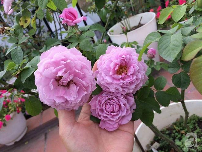 Ngôi nhà hoa hồng nhỏ nhắn và vô cùng dễ thương giữa thành phố Hạ Long của mẹ trẻ xinh đẹp - Ảnh 19.