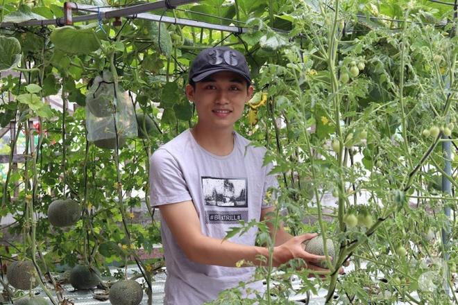 Vườn thủy canh bạt ngàn rau quả trên sân thượng thu hoạch đến gần 100kg mỗi vụ của chàng sinh viên kinh tế 9x - Ảnh 16.