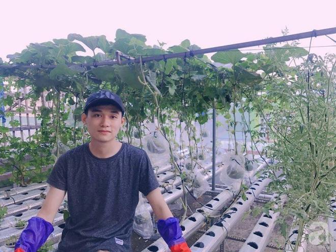 Vườn thủy canh bạt ngàn rau quả trên sân thượng thu hoạch đến gần 100kg mỗi vụ của chàng sinh viên kinh tế 9x - Ảnh 1.