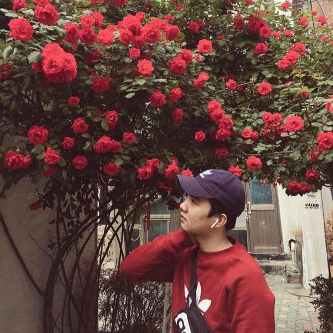 Mê đắm trước cổng nhà rực rỡ hoa hồng ở ngôi nhà thuê của chàng trai 9x - Ảnh 3.