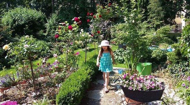 """Khu vườn đẹp như mơ của người chồng dành cả """"thanh xuân"""" đi tìm các loại hoa hiếm về tặng vợ - Ảnh 1."""