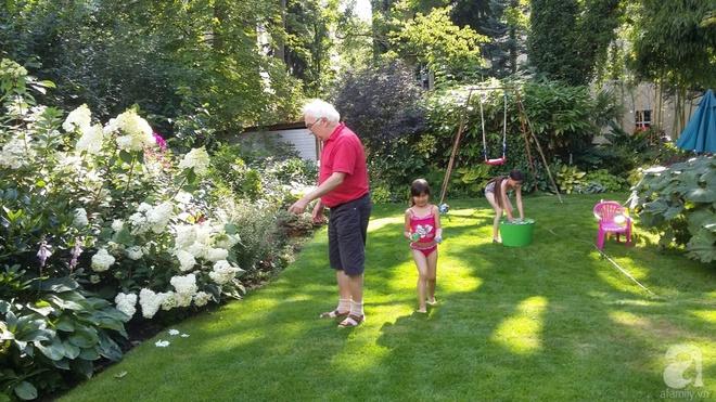 """Khu vườn đẹp như mơ của người chồng dành cả """"thanh xuân"""" đi tìm các loại hoa hiếm về tặng vợ - Ảnh 13."""