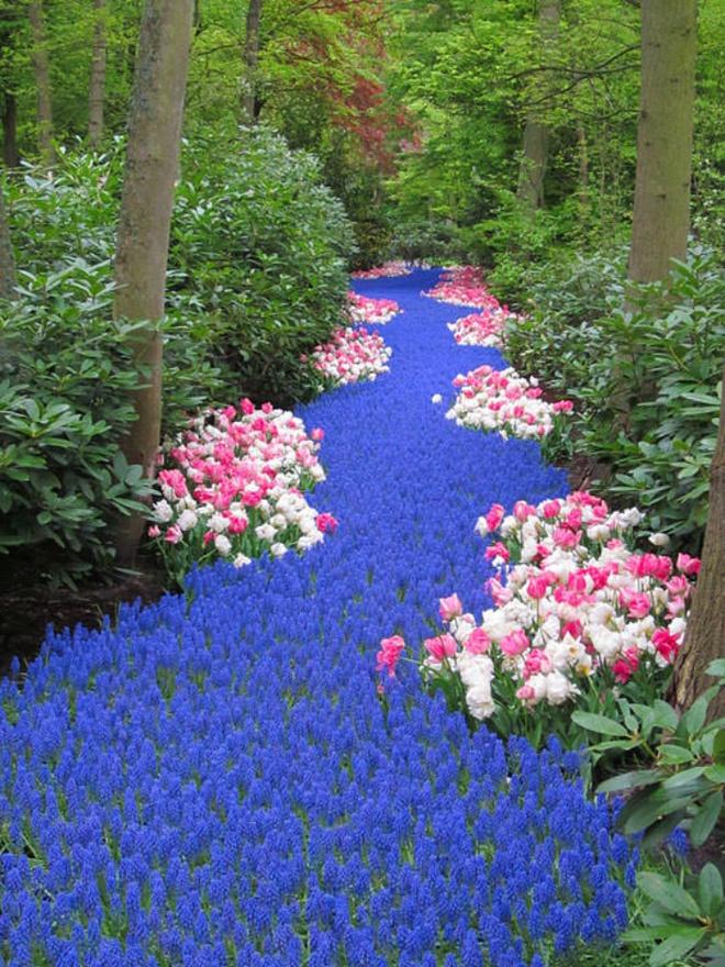 12 ý tưởng thiết kế khu vườn đẹp với biến tấu của hoa khiến bạn không thể rời mắt - Ảnh 7.