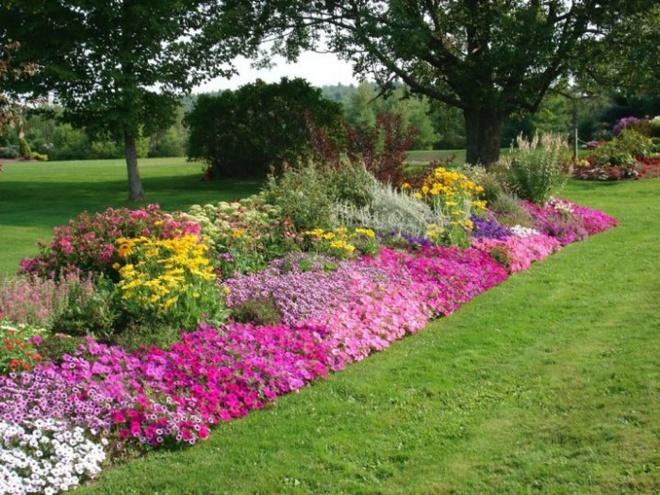 12 ý tưởng thiết kế khu vườn đẹp với biến tấu của hoa khiến bạn không thể rời mắt - Ảnh 12.