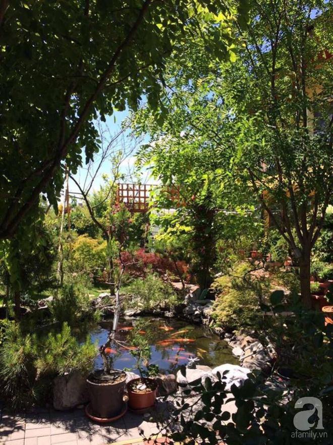 Ngắm khu vườn rộng hơn nghìn m² rực rỡ khoe hương sắc của người đàn ông Việt dành hết tâm huyết để chăm bón - Ảnh 2.