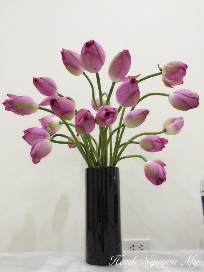 Mê mẩn ngắm những bình hoa sen đẹp tinh tế của người phụ nữ dịu dàng đất Hà Thành - Ảnh 19.