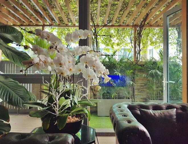 Ngắm căn hộ rộng đến 200m² và khu vườn view đẹp như trong mơ của nam ca sĩ Nathan Lee ở ngay Q1, Sài Gòn - Ảnh 16.