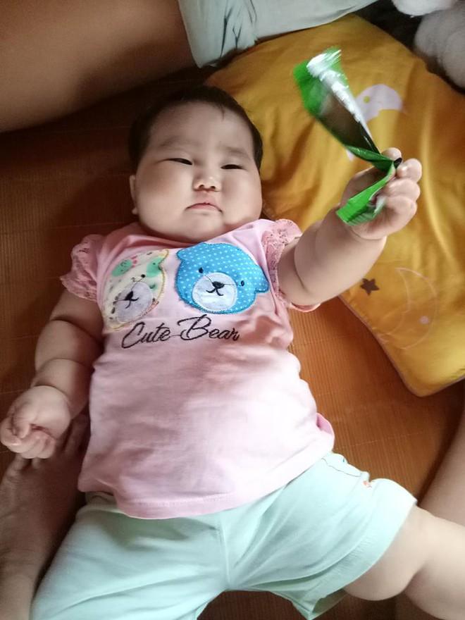 Truy lùng em bé có thân hình núc na núc ních khiến ai cũng nghĩ đến biệt danh Sumo - Ảnh 6.