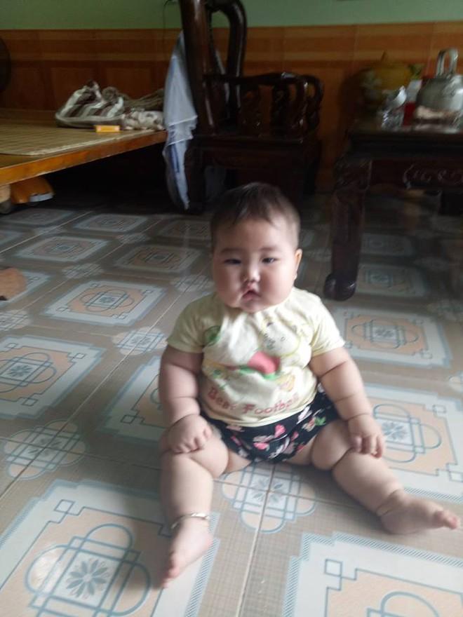 Truy lùng em bé có thân hình núc na núc ních khiến ai cũng nghĩ đến biệt danh Sumo - Ảnh 8.