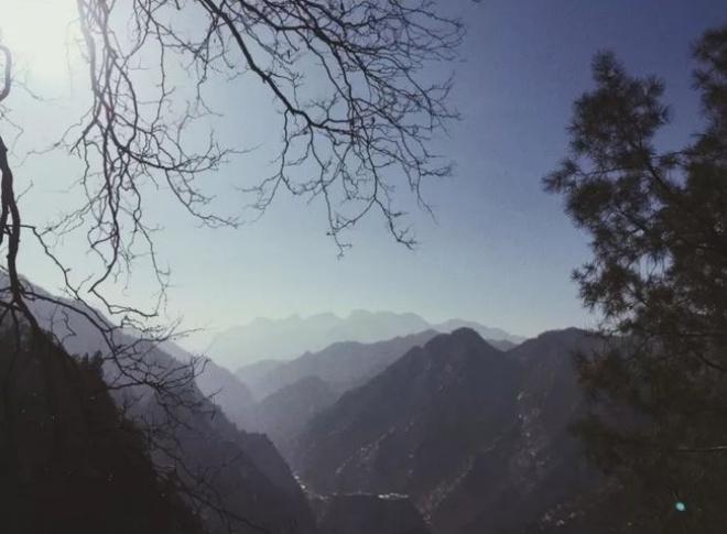 Yêu thích cuộc sống tĩnh lặng trên núi, cô gái 23 tuổi tự tay dựng ngôi nhà nhỏ, trồng rau, sống an nhàn những ngày thanh xuân - Ảnh 2.
