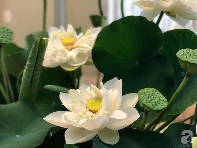 Cuối tuần cùng gặp gỡ người phụ nữ đẹp đất Cảng cắm hoa sen đẹp như tranh - Ảnh 3.
