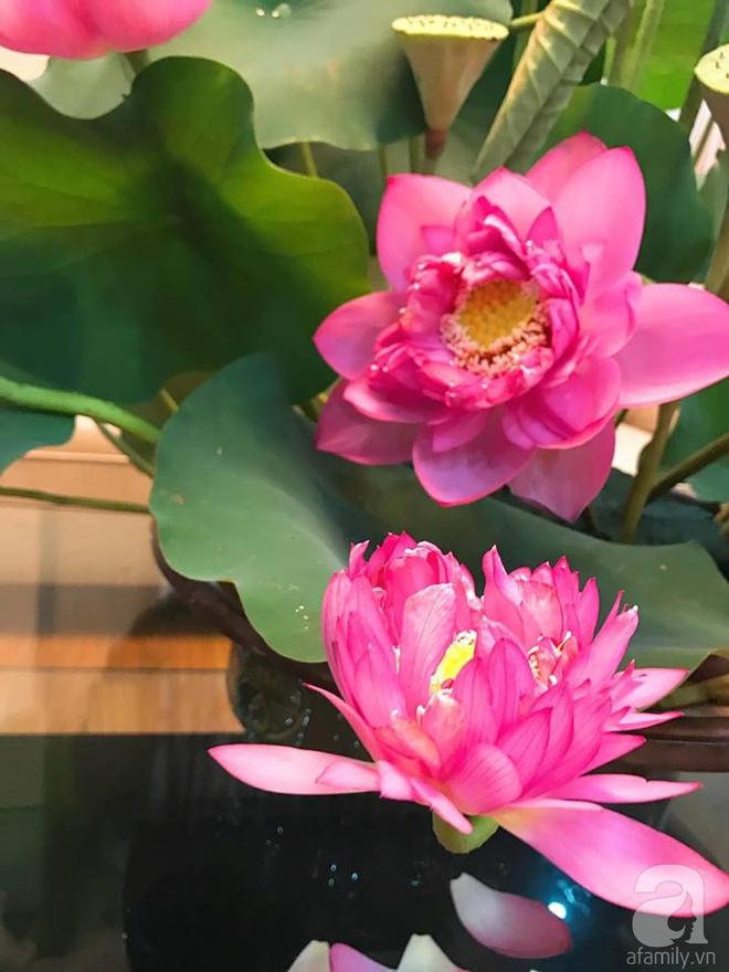 Cuối tuần cùng gặp gỡ người phụ nữ đẹp đất Cảng cắm hoa sen đẹp như tranh - Ảnh 6.