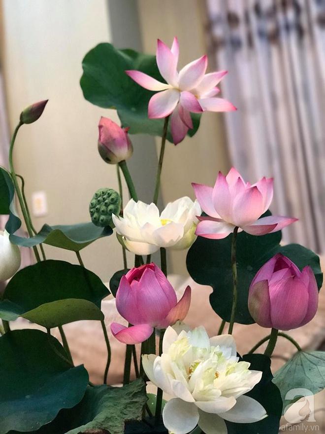 Cuối tuần cùng gặp gỡ người phụ nữ đẹp đất Cảng cắm hoa sen đẹp như tranh - Ảnh 14.