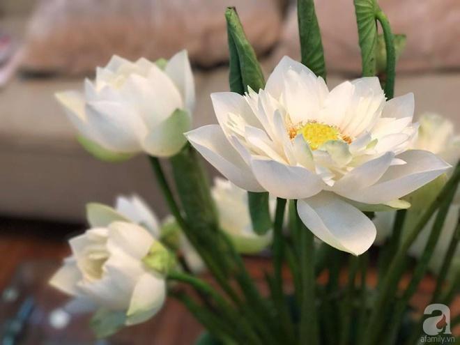Cuối tuần cùng gặp gỡ người phụ nữ đẹp đất Cảng cắm hoa sen đẹp như tranh - Ảnh 19.