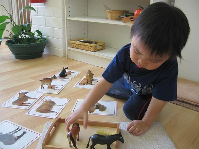 Những điều ấn tượng nhất của phương pháp Montessori đã thuyết phục nhiều phụ huynh - Ảnh 3.