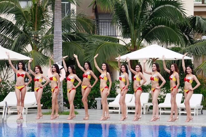 Diện bikini, dàn thí sinh Hoa hậu Hoàn vũ lộ đùi to, bụng mỡ khác xa ảnh photoshop - Ảnh 12.
