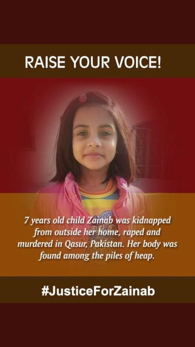 Bố mẹ đi xa, bé gái bị hãm hiếp nhiều lần rồi bị sát hại khiến người dân cả nước bàng hoàng, phẫn nộ - Ảnh 5.