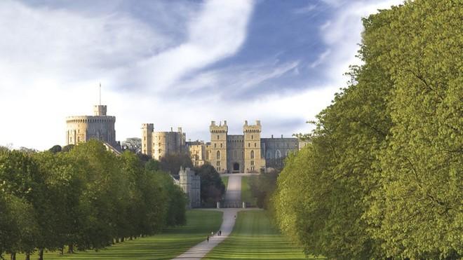 Trước đám cưới của hoàng tử Harry, dư luận Anh lại xôn xao vì ý kiến gây tranh cãi này - Ảnh 3.