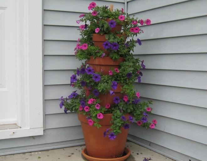 Cách đơn giản và dễ làm để tạo tháp chậu cây cho khu vườn hay hiên nhà bạn thêm sinh động - Ảnh 1.