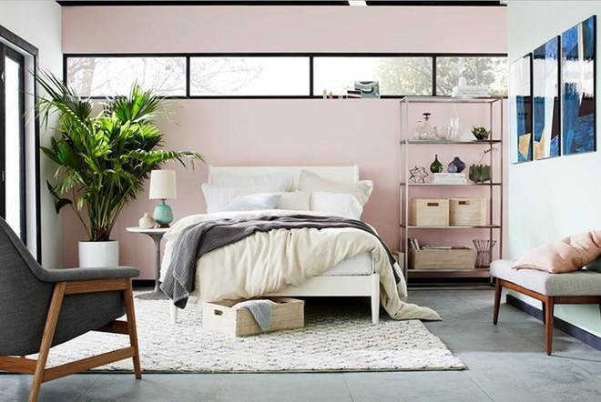 Những mẫu phòng ngủ hiện đại, thư giãn với cây cảnh - Ảnh 1.